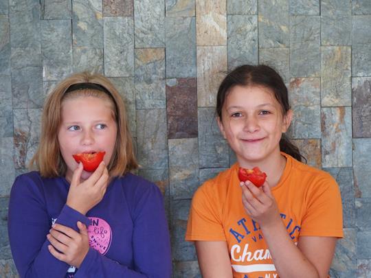 Anežka Havelková, Nikola Tláskalová a dvě rajčata